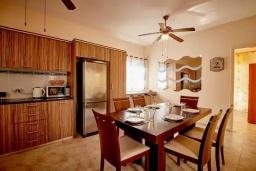 Кухня. Кипр, Корал Бэй : Уютная вилла с видом на Средиземное море, с 4-мя спальнями, с бассейном в окружении зелёного сада, тенистой террасой с патио и барбекю, расположена недалеко от пляжа Corallia Bay Beach