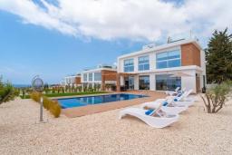 Зелёный сад. Кипр, Киссонерга : Роскошная вилла с бассейном и зеленым двориком с барбекю, 4 спальни, 4 ванные комнаты, джакузи, парковка, Wi-Fi