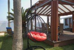Территория. Кипр, Гермасойя Лимассол : Роскошная пляжная вилла с бассейном и зеленым двориком, 7 спален, 4 ванные комнаты, барбекю, сауна, парковка, Wi-Fi
