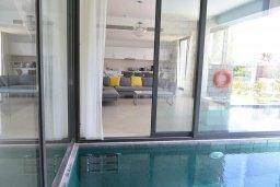 Бассейн. Кипр, Лачи : Роскошная современная вилла в 100 метрах от пляжа с бассейном и зеленым двориком, 5 спален, 3 ванные комнаты, барбекю, парковка, Wi-Fi