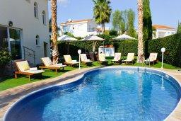 Вход. Кипр, Корал Бэй : Прекрасная вилла с бассейном и зеленым двориком с барбекю, 4 спальни, 2 ванные комнаты, парковка, Wi-Fi