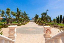 Территория. Кипр, Пейя : Роскошная вилла с бассейном и зеленой территорией, 7 спален, 6 ванных комнат, барбекю, джакузи, парковка, Wi-Fi