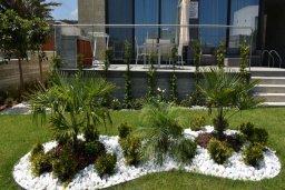 Территория. Кипр, Лачи : Роскошная современная вилла в 100 метрах от пляжа с бассейном и зеленым двориком, 3 спальни, 2 ванные комнаты, барбекю, парковка, Wi-Fi