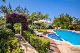 Бассейн. Кипр, Аргака : Роскошная вилла с бассейном и зеленым двориком с барбекю, 5 спален, 5 ванных комнат, сауна, парковка, Wi-Fi