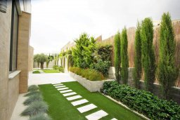 Территория. Кипр, Киссонерга : Роскошная современная вилла с бассейном и зеленым двориком, 5 спален, 4 ванные комнаты, джакузи, парковка, Wi-Fi