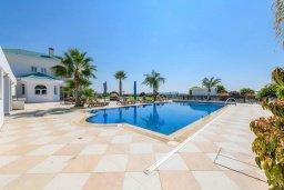 Бассейн. Кипр, Пиргос : Роскошная вилла с 6-ю спальнями, 6-ю ванными комнатами, большим бассейном, джакузи, зелёной территорией, бильярдом, настольным теннисом, тренажерным залом и сауной