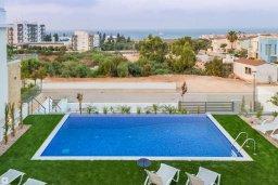 Бассейн. Кипр, Коннос Бэй : Современная вилла с видом на Средиземное море, с 4-мя спальнями, 3-мя ванными комнатами, с бассейном, солнечной лужайкой, патио, встроенным барбекю и с прекрасной террасой на крыше, расположена в 500 метрах от пляжа Mimosa Beach