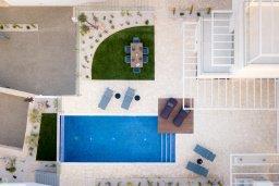 Бассейн. Кипр, Коннос Бэй : Современная вилла с бассейном и двориком с барбекю, 4 спальни, 3 ванные комнаты, парковка, Wi-Fi