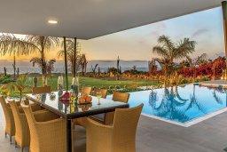 Бассейн. Кипр, Аргака : Роскошная пляжная вилла с бассейном и зеленым двориком, 4 спальни, 5 ванных комнат, барбекю, тренажерный зал, парковка, Wi-Fi