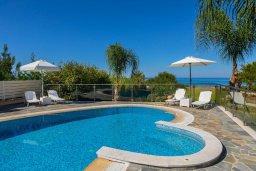Бассейн. Кипр, Аргака : Роскошная вилла в 50 метрах от пляжа с бассейном и зеленым садом, 4 спальни, 5 ванных комнат, сауна, джакузи, тренажерный зал, барбекю, парковка, Wi-Fi