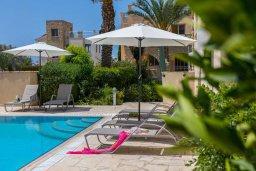 Зона отдыха у бассейна. Кипр, Аргака : Прекрасная вилла в 150 метрах от пляжа с бассейном и двориком с барбекю, 3 спальни, 3 ванные комнаты, парковка, Wi-Fi