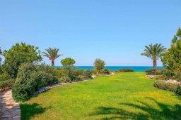Территория. Кипр, Аргака : Роскошная вилла в 50 метрах от пляжа с бассейном и зеленым садом, 4 спальни, 5 ванных комнат, сауна, джакузи, тренажерный зал, барбекю, парковка, Wi-Fi