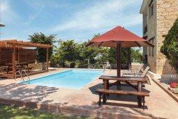 Бассейн. Кипр, Аргака : Уютная вилла с бассейном и зеленым двориком с барбекю, 3 спальни, 3 ванные комнаты , парковка, Wi-Fi