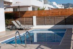 Бассейн. Кипр, Корал Бэй : Современная вилла с бассейном и двориком с барбекю, 3 спальни, 3 ванные комнаты, парковка, Wi-Fi