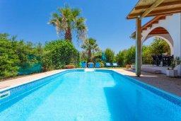 Бассейн. Кипр, Аргака : Уютная вилла с бассейном и зеленым двориком с барбекю, 2 спальни, 3 ванные комнаты, парковка, Wi-Fi