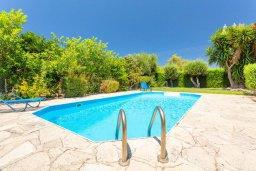 Бассейн. Кипр, Полис город : Уютная вилла в 200 метрах от пляжа с бассейном и зеленым двориком с барбекю, 2 спальни, 3 ванные комнаты, парковка, Wi-Fi