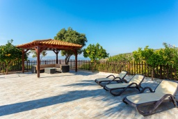 Территория. Кипр, Скулли : Прекрасная вилла с бассейном и двориком с барбекю, 7 спален, 6 ванных комнат, парковка, Wi-Fi