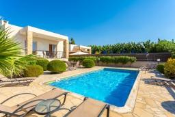 Бассейн. Кипр, Киссонерга : Превосходная вилла в 60 метрах от пляжа с бассейном и двориком с барбекю, 5 спален, 3 ванные комнаты, парковка, Wi-Fi