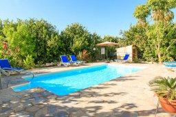 Бассейн. Кипр, Полис город : Уютная вилла с бассейном и двориком с барбекю, 3 спальни, 3 ванные комнаты, парковка, Wi-Fi
