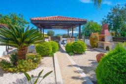 Территория. Кипр, Нео Хорио : Роскошная вилла с бассейном и двориком с барбекю, 4 спальни, 3 ванные комнаты, парковка, Wi-Fi