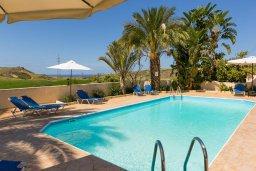 Бассейн. Кипр, Полис город : Уютная вилла с бассейном и зеленым двориком с барбекю, 4 спальни, 5 ванных комнат, парковка, Wi-Fi