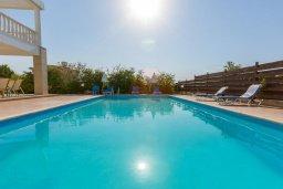 Бассейн. Кипр, Пейя : Двухэтажная вилла с бассейном, большая гостиная, 4 спальни, 4 ванные комнаты, дворик, место для барбекю, парковка, Wi-Fi