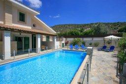 Бассейн. Кипр, Скулли : Прекрасная вилла с бассейном и двориком с барбекю, 5 спален, 5 ванных комнат, парковка, Wi-Fi