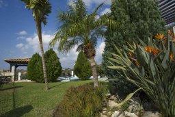 Территория. Кипр, Скулли : Роскошная вилла с бассейном и двориком с барбекю, 4 спальни, 4 ванные комнаты, игровая комната, парковка, Wi-Fi