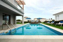 Бассейн. Кипр, Нисси Бич : Роскошная вилла с бассейном и зеленым двориком, 3 спальни, 2 ванные комнаты, парковка, Wi-Fi