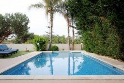 Бассейн. Кипр, Писсури : Прекрасная вилла с бассейном и двориком с барбекю, 5 спален, 5 ванных комнат, парковка, Wi-Fi