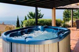 Территория. Кипр, Месоги : Роскошная вилла с бассейном, джакузи и двориком с барбекю, 4 спальни, 3 ванные комнаты, парковка, Wi-Fi