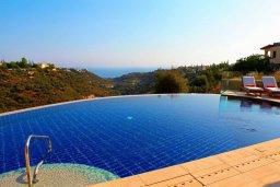 Бассейн. Кипр, Куклия : Роскошная вилла с большим бассейном, джакузи, зеленой территорией и барбекю, 5 спален, 5 ванных комнат, тренажерный зал, парковка, Wi-Fi