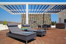 Территория. Кипр, Гермасойя Лимассол : Просторная современная вилла с большим бассейном и двориком с патио и барбекю, 5 спален, 6 ванных комнат, парковка, Wi-Fi