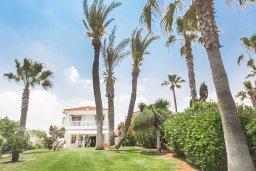 Территория. Кипр, Каппарис : Роскошная вилла возле пляжа с бассейном, у хоженным садом и видом на море, 5 спален, 5 ванных комнат, барбекю, парковка, Wi-Fi