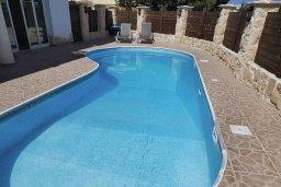 Бассейн. Кипр, Пафос город : Прекрасная вилла с бассейном и приватным двориком, 3 спальни, 2 ванные комнаты, парковка, Wi-Fi