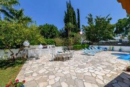 Территория. Кипр, Санрайз Протарас : Великолепная вилла с 3-мя спальнями, 2-мя ванными комнатами, большим бассейном, в окружении зелёного сада, с тенистой террасой с патио и барбекю, расположена на холме Profitis Elias Hill