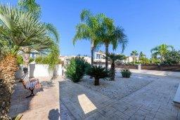 Территория. Кипр, Санрайз Протарас : Очаровательная вилла с 3-мя спальнями, 2-мя ванными комнатами, с бассейном, тенистой террасой с патио, традиционным барбекю, расположена недалеко от церкви Saint Elias