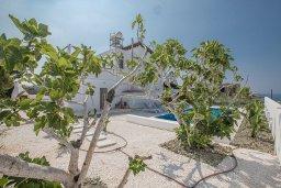 Территория. Кипр, Аммос - Лимнария Бич : Великолепная вилла с видом на Средиземное море, с 4-мя спальнями, с бассейном, тенистой террасой с патио и каменным барбекю, расположена в 450 метрах от пляжа Glyki Nero Beach