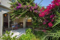 Территория. Кипр, Центр Айя Напы : Апартамент в центре Айя-Напы с гостиной, отдельной спальней, террасой и садом