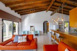 Гостиная. Кипр, Аммос - Лимнария Бич : Потрясающая вилла с великолепным видом на море, с 3-мя спальнями, бассейном, уютным двориком и каменной печью, расположена около пляжа Ammos Tou Kampouri Beach