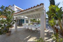 Зона отдыха у бассейна. Кипр, Каво Марис Протарас : Очаровательная вилла с 4-мя спальнями, с бассейном, солнечной террасой с патио, перголой и каменным барбекю, расположена недалеко от пляжа Vyzakia Beach