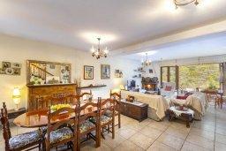 Обеденная зона. Кипр, Троодос : Очаровательный коттедж с 4-мя спальнями, просторной террасой с потрясающим видом на горы, расположен в деревне Amiantos на вершине холма над берегом реки Kouris