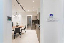 Кухня. Кипр, Центр Айя Напы : Потрясающий апартамент с отдельной спальней, расположен в современном комплексе с бассейном в центре Ayia Napa