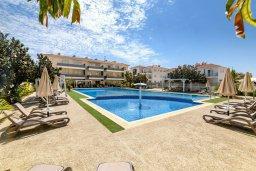 Бассейн. Кипр, Каппарис : Очаровательный апартамент с 2-мя спальнями, расположен в комплексе с бассейном, теннисным кортом и спортивной площадкой