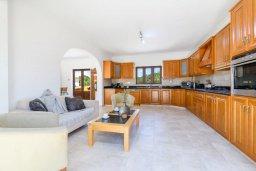 Кухня. Кипр, Центр Айя Напы : Чудесная вилла с видом на Средиземное море, с 4-мя спальнями, с бассейном, солнечной террасой с патио и барбекю, расположена на холмах Ayia Napa