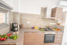 Кухня. Кипр, Пернера Тринити : Современная вилла с 3-мя спальнями, с бассейном, солнечной террасой с патио и барбекю, расположена недалеко от пляжа Agia Triadа Beach