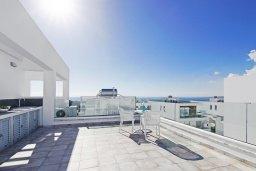Терраса. Кипр, Центр Айя Напы : Потрясающая вилла с террасой на крыше с видом на Средиземное море, с 3-мя спальнями, с бассейном, патио и барбекю, расположена в центре Айя-Напы