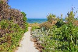 Территория. Кипр, Ионион - Айя Текла : Замечательная вилла в окружении зелёного сада, с 3-мя спальнями, с бассейном, солнечной террасой с патио и барбекю, расположена в 70 метрах от моря