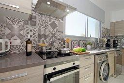 Кухня. Кипр, Центр Айя Напы : Роскошная вилла с панорамным видом на Средиземное море, с 4-мя спальнями, с бассейном, солнечной террасой с патио и барбекю, расположена в центре Ayia Napa