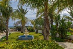 Зелёный сад. Кипр, Ионион - Айя Текла : Очаровательная вилла с видом на Средиземное море, с 2-м спальнями, тенистой террасой с патио и барбекю, в окружении зелёного сада, расположена в тихом районе Айя-Текла